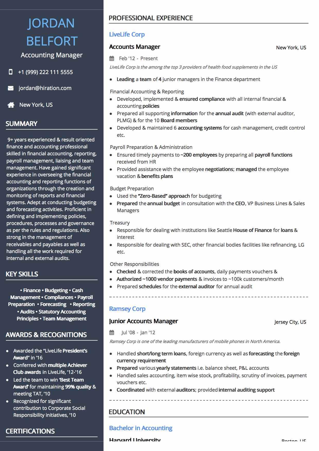 20 Professional Resume Designs